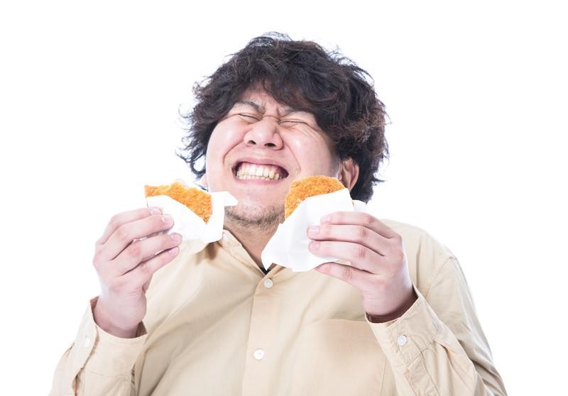大食いのメタボ体型