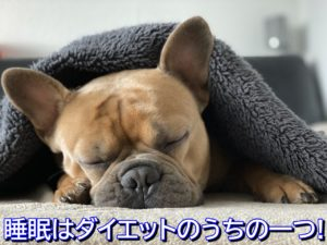 ダイエットのための睡眠