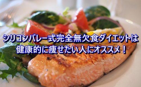 シリコンバレー式完全無欠食ダイエットは 健康的に痩せたい人にオススメ!